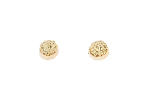 Field poppy seed head stud earrings.